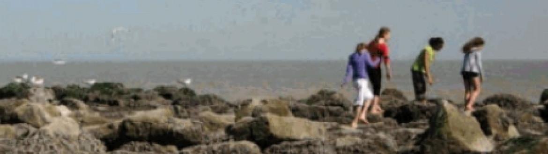 zeekoffer mensen strand